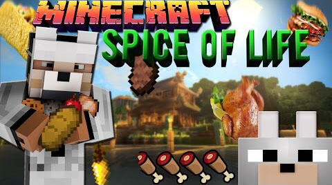 The Spice Of Life Mod for Minecraft (1.10.2/1.9.4/1.8.9/1.7.10)
